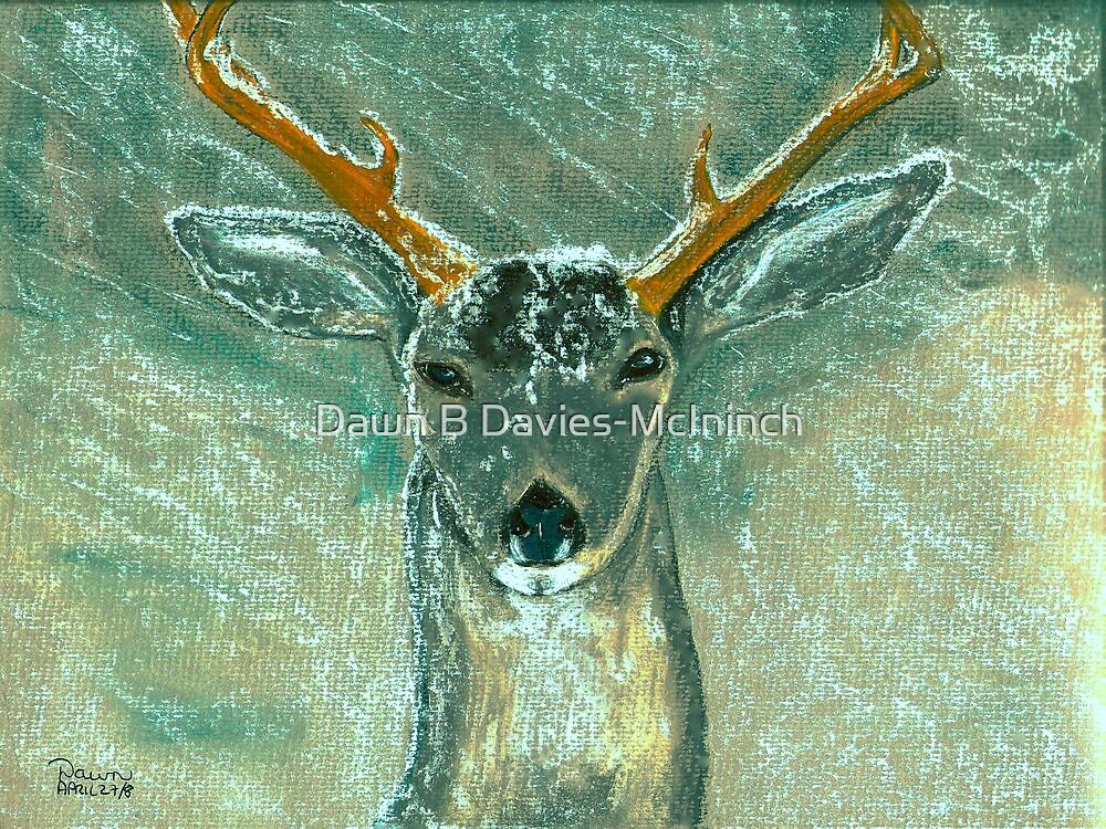 Snow Gazer by Dawn B Davies-McIninch