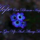 Hope Can Blossom Anywhere by HeavenOnEarth