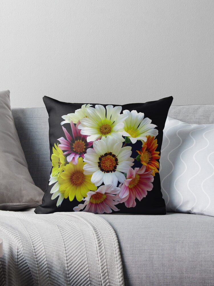 Meet the Gazania family by Magee