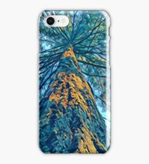 Vancouver Island Trees 2 iPhone Case/Skin