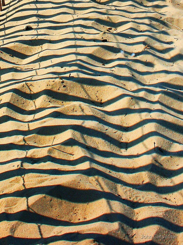 Zebra Sand Stripes by John Carpenter