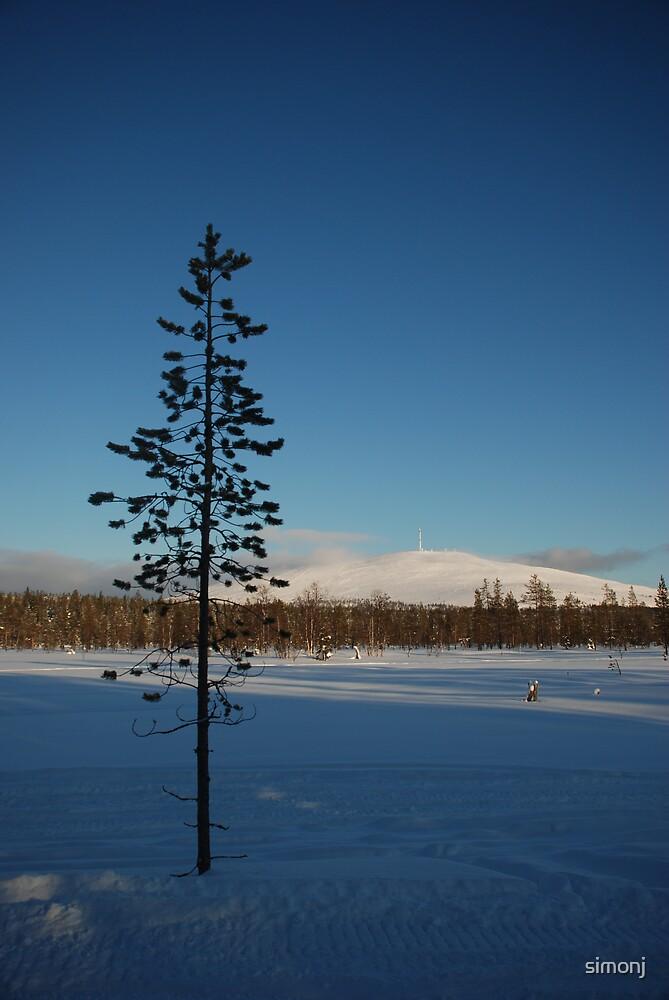 Finnish Fell by simonj