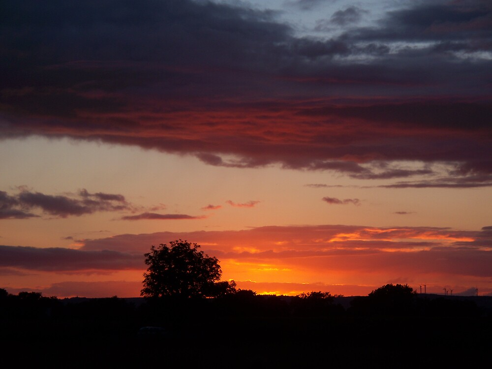 Sunset in frenchpark. by peter boalch.