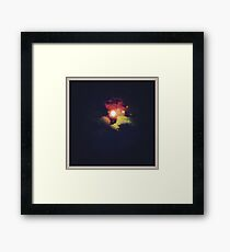 COLORED MOON Framed Print
