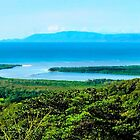 Daintree River flows into the Coral Sea  by Lexa Harpell