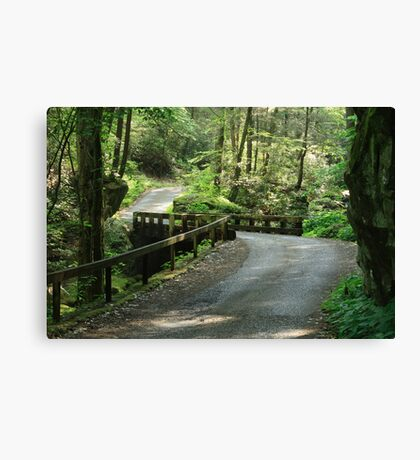 Easy Going Canvas Print