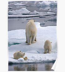 A Bear Behind!    Poster