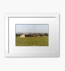 The Tuscan Sunflower Framed Print
