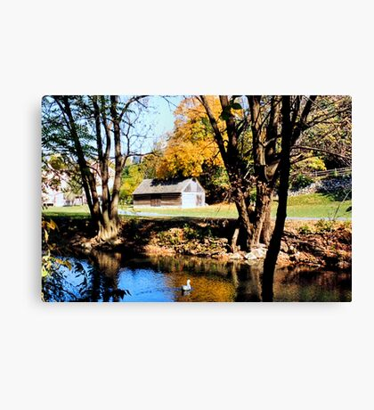 Monocacy creek - Bethlehem Canvas Print