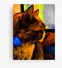Brown and Blue Cat with some Yellow Canvas Print