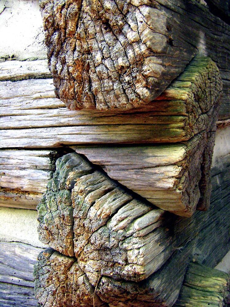 Log Cabin Macro by Sheila McCrea