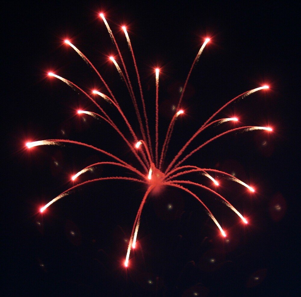 Fourth Of July Fireworks by declown
