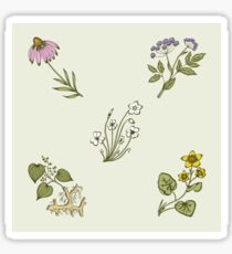 Wild Herbs & Wild Flowers - Pattern Sticker