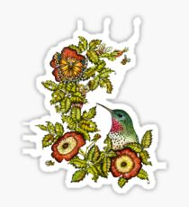 Resting Hummingbird Sticker