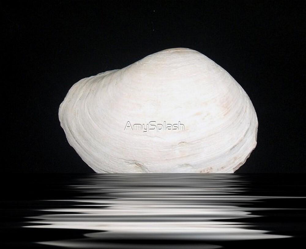 White Shell by AmySplash