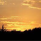 Monday Night Sunset by Glenna Walker