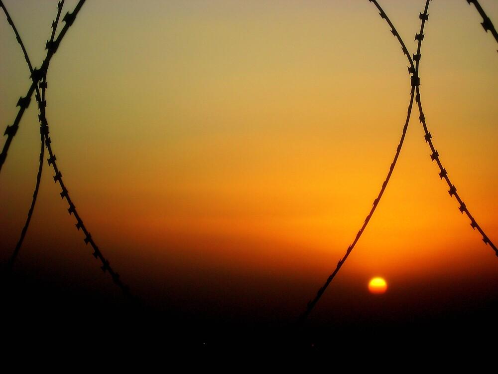 Battle Field Sunset by Daniel Taylor