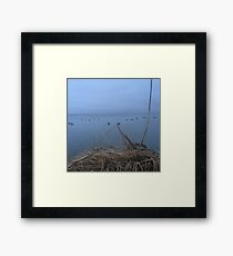 Early Morning Duck Hunt Framed Print