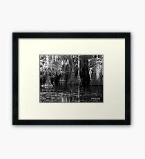Dark Water - Caddo Lake near Uncertain, Texas Framed Print