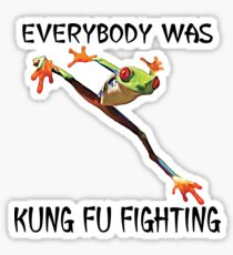 Everybody Was Kung Fu Fighting Funny Cute Tree Frog Sticker