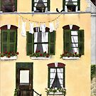 European Apartment building, Green Shutters, with hanging laundry by birdsandberry