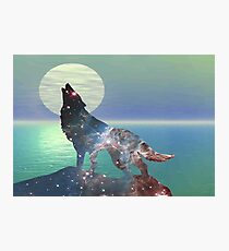 Star Wolf Photographic Print