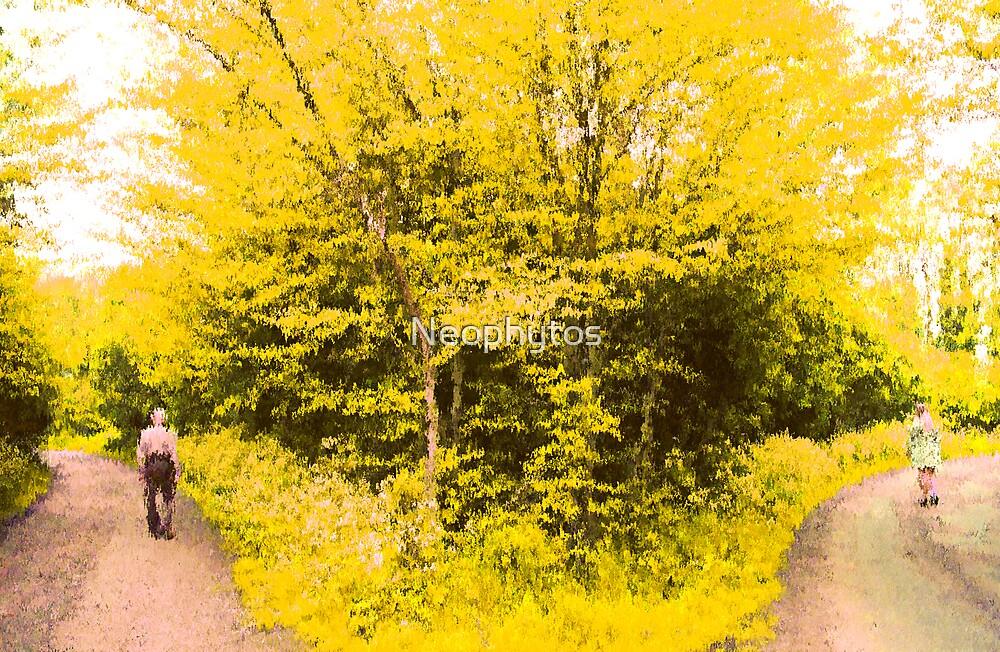 Brightlingsea Country Lane by Neophytos