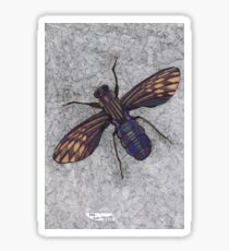 074 - FLY (Ink and coloured pencils) - 1998 Sticker