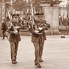 Castle Guard Praha by Imagery
