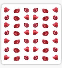 Watercolour Raspberry Fruit Design Sticker