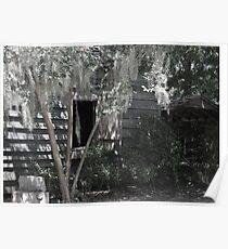 magnolia plantation, bw 1 Poster