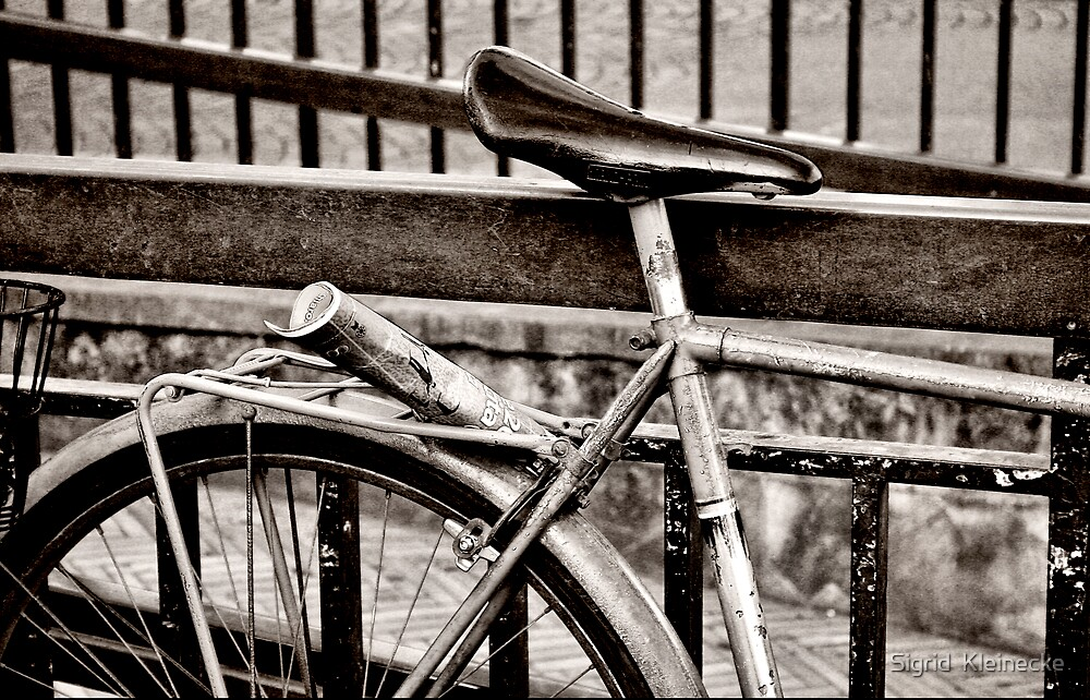 I want to ride my bicycle by Sigrid  Kleinecke