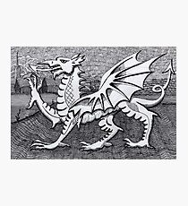 213 - WELSH DRAGON - DAVE EDWARDS - INK - 2007 Photographic Print