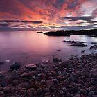 purple dawn, auchmithie by codaimages