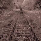 untitled - railway tracks  by jackson photografix