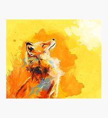 Blissful Light - Fox illustration, animal portrait, inspirational Photographic Print