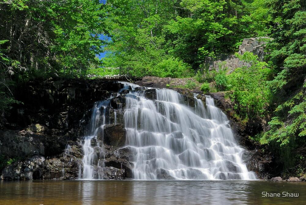 Gillis Falls by Shane Shaw