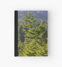 Evergreen forest in Carpathian Mountains Hardcover Journal