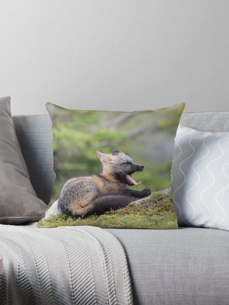 Tired Fox Kit by mlorenz