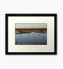 Magee Marsh Duck Hunt Framed Print