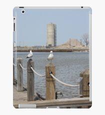 River Seagulls  iPad Case/Skin