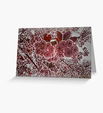 Abstract Cherry Blossom Greeting Card