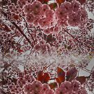 Abstract Cherry Blossom by Forfarlass