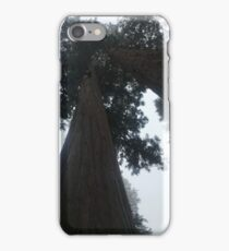 Forest of Giants iPhone Case/Skin