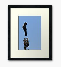 Carnaby's Cockatoo On High Vantage Point Framed Print