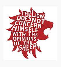 The Lion Does Not Concern Himself Photographic Print