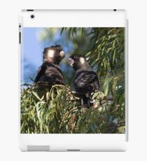He and She Carnaby's Cockatoos iPad Case/Skin