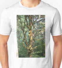 Cool Tree T-Shirt