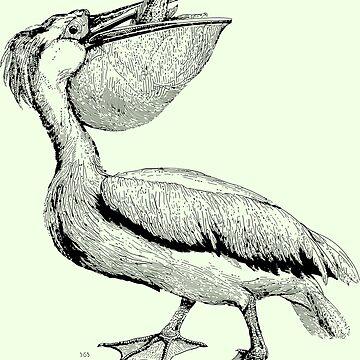 Pelican Victorian Print  by JoeStraz