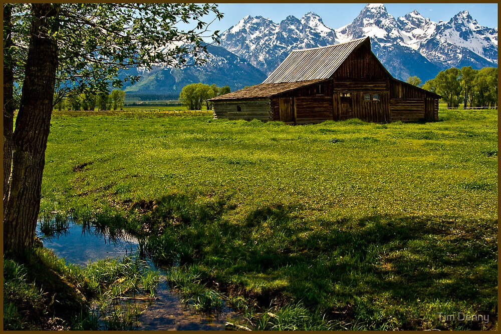 ~ Teton Mountain Farming ~ by Tim Denny